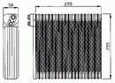 Evaporador, aire acondicionado NRF B.V. 36114
